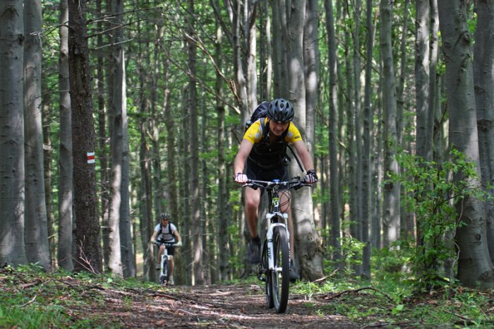 mountainbike tips