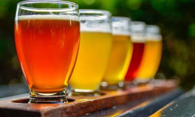 bier proeverij organiseren