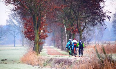 De mooiste mountainbike routes van Nederland