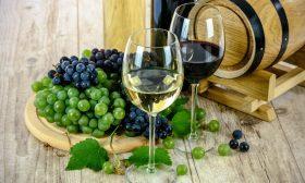 feitjes over wijn