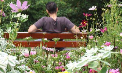 man op tuinbankje